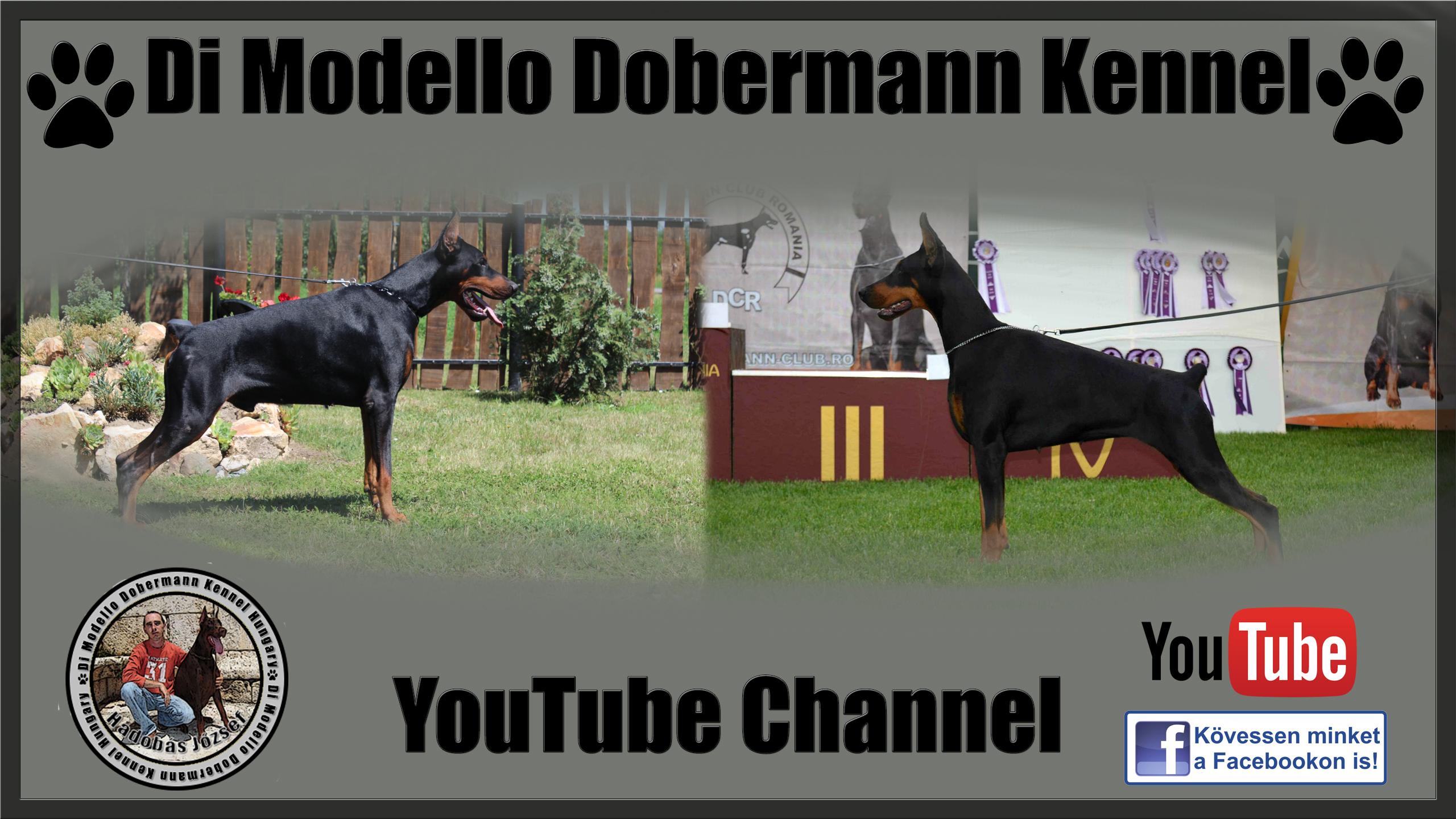 youtubeboritokep
