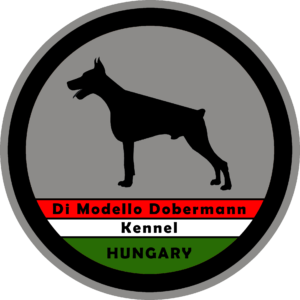 Di Modello Dobermann Kennel